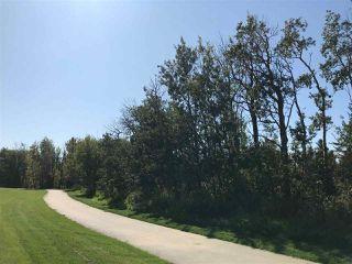 Photo 13: 410 Edgemont Road in Edmonton: Zone 57 House for sale : MLS®# E4173680