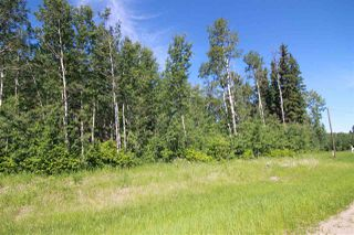 Main Photo: 17 54406 Rge Rd 15: Rural Lac Ste. Anne County Rural Land/Vacant Lot for sale : MLS®# E4202106