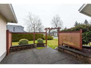 Photo 19: 8316 167 ST Street in Surrey: Fleetwood Tynehead House for sale : MLS®# R2426550