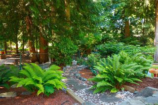 Photo 46: 8714 Forest Park Dr in North Saanich: NS Dean Park House for sale : MLS®# 844492