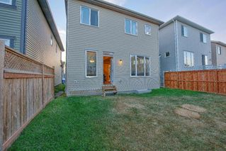 Photo 36: 49 CITYSCAPE Mount NE in Calgary: Cityscape Detached for sale : MLS®# A1035556