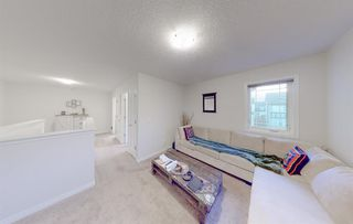 Photo 31: 49 CITYSCAPE Mount NE in Calgary: Cityscape Detached for sale : MLS®# A1035556