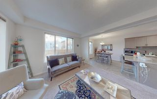 Photo 14: 49 CITYSCAPE Mount NE in Calgary: Cityscape Detached for sale : MLS®# A1035556