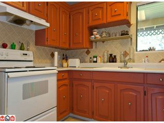 "Photo 9: 16755 20TH Avenue in Surrey: Grandview Surrey House for sale in ""NCP 2"" (South Surrey White Rock)  : MLS®# F1029033"