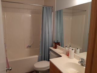 Photo 17: 9904 144 Avenue in Edmonton: Zone 27 House for sale : MLS®# E4186602