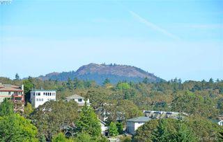 Photo 43: 307 1510 Hillside Avenue in VICTORIA: Vi Hillside Condo Apartment for sale (Victoria)  : MLS®# 423860