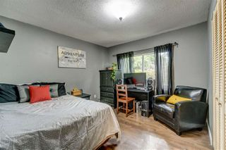 Photo 12: 23205 123 AVENUE in Maple Ridge: East Central House for sale : MLS®# R2367880