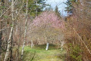 Photo 40: 235 Pearson College Dr in : Me William Head Single Family Detached for sale (Metchosin)  : MLS®# 854443