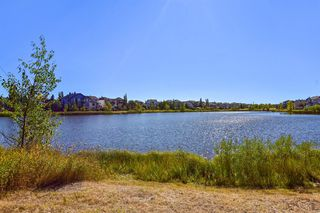 Photo 16: 181 West Creek Pond: Chestermere Detached for sale : MLS®# A1032317