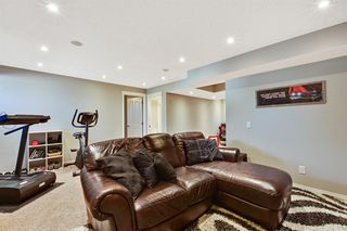Photo 45: 181 West Creek Pond: Chestermere Detached for sale : MLS®# A1032317