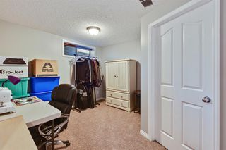 Photo 47: 181 West Creek Pond: Chestermere Detached for sale : MLS®# A1032317