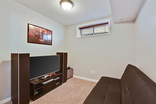 Photo 48: 181 West Creek Pond: Chestermere Detached for sale : MLS®# A1032317