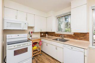 Photo 5: 6046 107A Street in Edmonton: Zone 15 House for sale : MLS®# E4219057