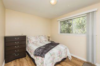 Photo 11: 6046 107A Street in Edmonton: Zone 15 House for sale : MLS®# E4219057