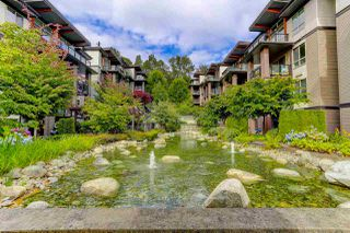 """Photo 14: 414 7418 BYRNEPARK Walk in Burnaby: South Slope Condo for sale in """"GREEN"""" (Burnaby South)  : MLS®# R2388618"""
