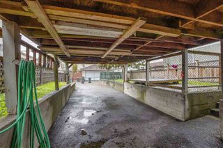 Photo 9: 6751 KNIGHT Street in Vancouver: Knight House for sale (Vancouver East)  : MLS®# R2414244
