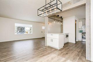 Photo 23: 10315 47 Street NW in Edmonton: Zone 19 House for sale : MLS®# E4192437