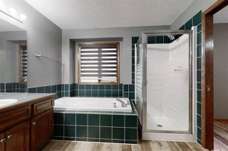 Photo 19: 3804 42 Street in Edmonton: Zone 29 House for sale : MLS®# E4198957