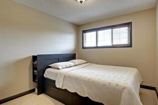 Photo 18: 413 AUBURN BAY Boulevard SE in Calgary: Auburn Bay Detached for sale : MLS®# A1015567