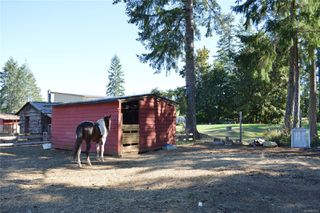 Photo 35: 6426 Walker Rd in : PA Alberni Valley House for sale (Port Alberni)  : MLS®# 855014