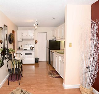 Photo 11: 20 2703 79 Street NW in Edmonton: Zone 29 Carriage for sale : MLS®# E4219444