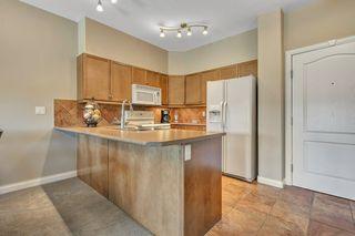 Photo 11: 309 1406 HODGSON Way in Edmonton: Zone 14 Condo for sale : MLS®# E4167558