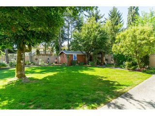 Photo 19: 18222 58B Avenue in Surrey: Cloverdale BC House for sale (Cloverdale)  : MLS®# R2395473