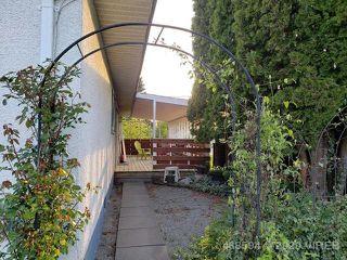 Photo 24: 4853 MARGARET STREET in PORT ALBERNI: Z6 Port Alberni House for sale (Zone 6 - Port Alberni)  : MLS®# 468594