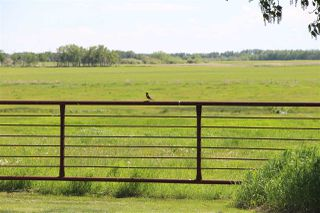 Photo 26: 555077 RR162: Rural Lamont County House for sale : MLS®# E4202052