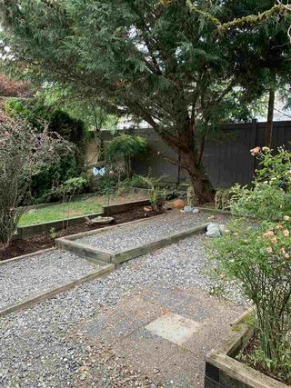 """Photo 2: 14 12099 237 Street in Maple Ridge: East Central Townhouse for sale in """"Gabriola"""" : MLS®# R2479404"""