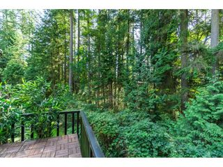 "Photo 22: 44 103 PARKSIDE Drive in Port Moody: Heritage Mountain Townhouse for sale in ""TREE TOPS"" : MLS®# R2492437"