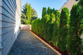 Photo 34: 20806 52A Avenue in Langley: Langley City 1/2 Duplex for sale : MLS®# R2518215