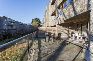 "Photo 14: 116 8451 WESTMINSTER Highway in Richmond: Brighouse Condo for sale in ""ARBORETUM II"" : MLS®# R2437430"