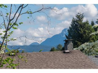 Photo 33: 20877 ALPINE Crescent in Maple Ridge: Northwest Maple Ridge House for sale : MLS®# R2454565