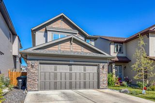 Photo 41: 835 NEW BRIGHTON Drive SE in Calgary: New Brighton Detached for sale : MLS®# A1032257