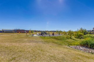 Photo 46: 835 NEW BRIGHTON Drive SE in Calgary: New Brighton Detached for sale : MLS®# A1032257