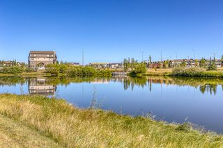 Photo 43: 835 NEW BRIGHTON Drive SE in Calgary: New Brighton Detached for sale : MLS®# A1032257