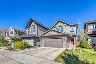 Photo 42: 835 NEW BRIGHTON Drive SE in Calgary: New Brighton Detached for sale : MLS®# A1032257