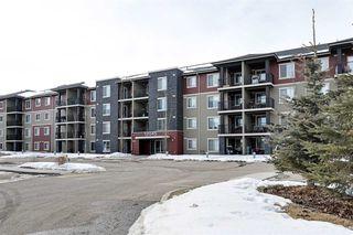 Photo 32: 401 12045 22 Avenue in Edmonton: Zone 55 Condo for sale : MLS®# E4190422