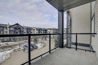 Photo 14: 307 1204 156 Street in Edmonton: Zone 14 Condo for sale : MLS®# E4191017