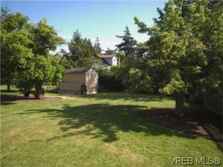Photo 5: 1117 Wychbury Ave in VICTORIA: Es Saxe Point Single Family Detached for sale (Esquimalt)  : MLS®# 512876