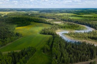 Photo 5: 380040 N Range Road 6-5 in Rural Clearwater County: NONE Residential for sale : MLS®# A1004448