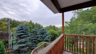 Photo 50: 10502 102 Avenue: Fort Saskatchewan House for sale : MLS®# E4214382