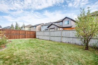 Photo 43: 56 BRIGHTONWOODS Grove SE in Calgary: New Brighton Detached for sale : MLS®# A1026524