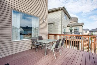 Photo 40: 56 BRIGHTONWOODS Grove SE in Calgary: New Brighton Detached for sale : MLS®# A1026524