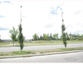Photo 12: 231 COPPERFIELD Lane SE in CALGARY: Copperfield Townhouse for sale (Calgary)  : MLS®# C3385250