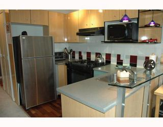 "Photo 4: 1105 501 PACIFIC Street in Vancouver: Downtown VW Condo for sale in ""THE 501"" (Vancouver West)  : MLS®# V775730"