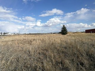 Photo 4: 5039 56 Street: Tofield Land Commercial for sale : MLS®# E4195609