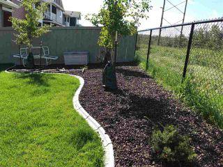 Photo 46: 3901 ROBINS Crescent in Edmonton: Zone 59 House for sale : MLS®# E4196395