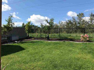 Photo 48: 3901 ROBINS Crescent in Edmonton: Zone 59 House for sale : MLS®# E4196395